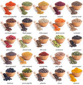 Collection of different spices and herbs — Stockfoto