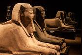 Esfinge egípcia antiga. — Foto Stock