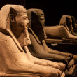 Ancient Egyptian Sphinx. — Stock Photo #21608011