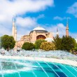 Hagia Sophia, mosque and museum in Istanbul, Turkey. — Stock Photo #28999395