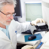 Life scientist researching in the laboratory. — Stock Photo