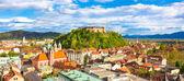 Panorama of Ljubljana, Slovenia, Europe. — Zdjęcie stockowe