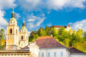 Panorama of Ljubljana, Slovenia, Europe. — Stock Photo