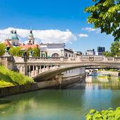 Dragon bridge in Ljubljana, Slovenia, Europe. — Stock Photo