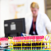 Rack of tubes with blood samples. — Stock Photo