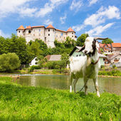 Zuzemberk Castle, Slovenian tourist destination. — Stock Photo