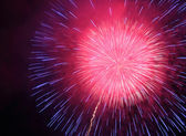 Firework on night sky — Stock Photo