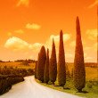 Tuscany pathway — Stock Photo
