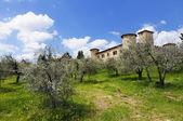 Paesaggio della Toscana — Foto Stock