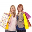Shopping — Stock Photo #28346219
