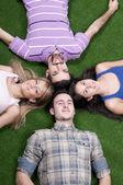 Leží na trávě — Stock fotografie