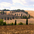 Stock Photo: Tuscan Landscape