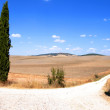 Tuscan Landscape — Photo