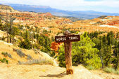 Bryce Canyon — Stock Photo