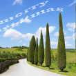 Merry Christmas in Tuscany — Foto de Stock