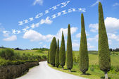 Merry Christmas in Tuscany — Stockfoto