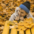 The mellow autumn in city park. — Stock Photo