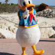 Stock Photo: ORLANDO, FL- FEB 5: Donald duck dressed as captain walking ar