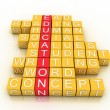 Education Toy Blocks (colorful cubes buzzword series) — Stock Photo #28358277