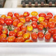 Many colorful Tomato red and yellow on a tray ready to be served — Lizenzfreies Foto