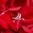Macro shot of set of wedding rings in red rose petals — Stock Photo #39588609