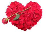 Heart shape of red rose petals with a red rose — Stock Photo