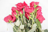 Died roses on floor — Stock Photo