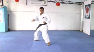 Martial arts man in kimono exercising karate kata. — Stock Video