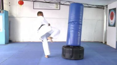 Black belt Karate kicking the sandbag — Stock Video