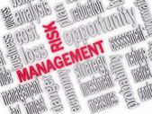 3d Illustration of Wordcloud word tags of risk management  — Stock Photo