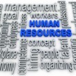 Human Resources concept in tag cloud on white background — Stock Photo #46632075