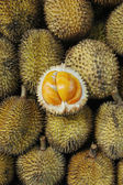 Elai, frutas tropicais como fruta durian — Foto Stock