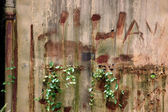 Old and rusty iron wall with creeping weeds — Stock Photo