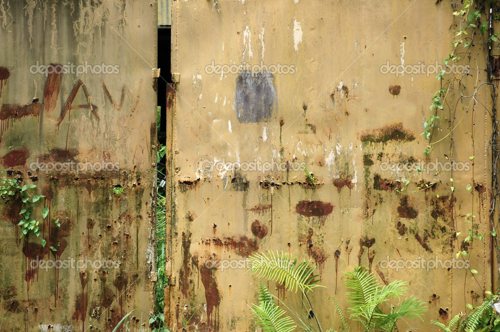 Old and rusty  iron wall with creeping weeds  — Stock Photo #12856716