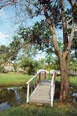 Tuin met een vijver en bridge — Stockfoto