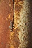 Texture rusty iron pole background — Stock Photo