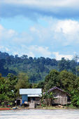View of a village on the banks of the river Malinau, Indonesia — Stock Photo
