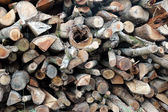 Pile of firewood — Stockfoto