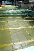 Bagno di acquacoltura gamberetti — Foto Stock