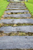 A curvaceous foothpath made of concrete blocks across the grass — Stock Photo