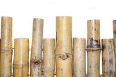 Clôture de bambou — Photo