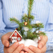 Christmas tree and house. — Stock Photo