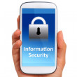 Information security. — Stock Photo #47221205