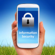 Information security. — Stock Photo #47221207