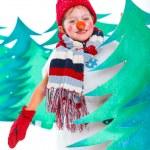 Snowman — Stock Photo #17820665