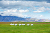 Icelandic Rural Landscape. — Stock Photo