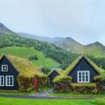 Постер, плакат: Iceland Tradition Houses