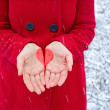 Royalty-Free Stock Photo: Heart in the hands