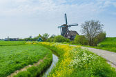 Holland Windmill — Stock Photo