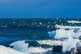 Ett isberg att brytas av vågorna — Stockfoto